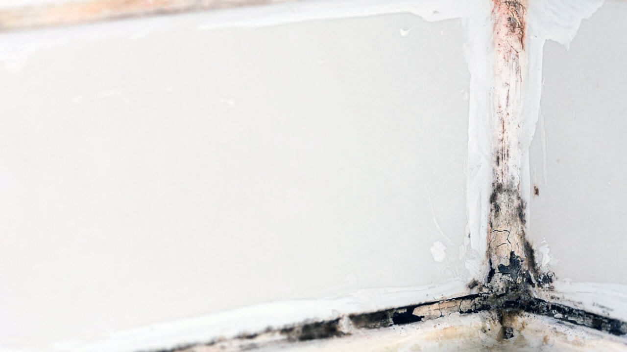 mould in caulking from moisture